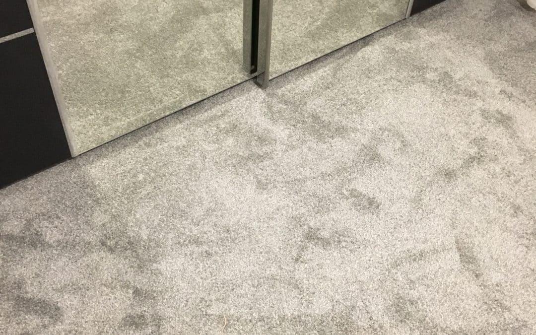 Silver Cloud Carpet