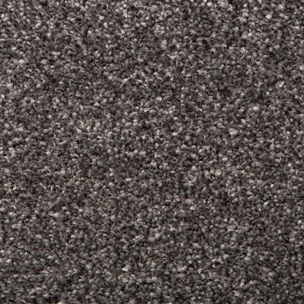 Dappled Grey