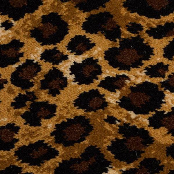 Safari Leopard